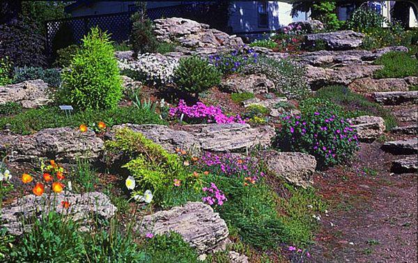 decoration jardin avec des pierres maison fran ois fabie. Black Bedroom Furniture Sets. Home Design Ideas